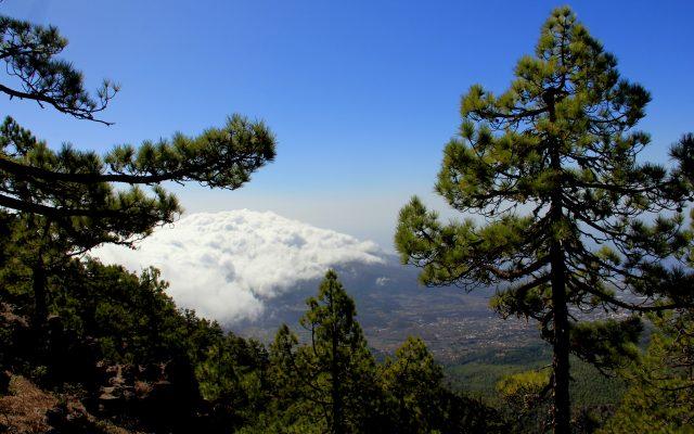 Aussicht von den Bergen